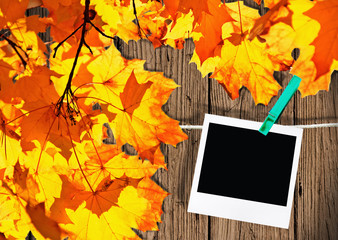 best moments of golden autumn