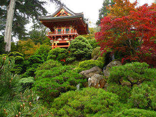 Japanese Pagoda on Tree Filled Hilltop