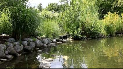 Photos illustrations et vid os de bassin aquatique - Amenagement bassin aquatique ...