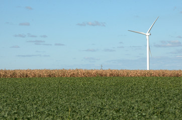 Single wind turbine on a landscape