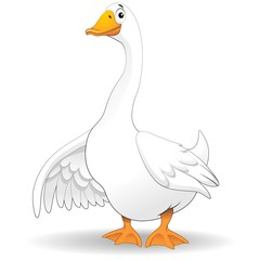 Door stickers Draw Oca Papero Fumetto-Goose Duck Cartoon-Vector