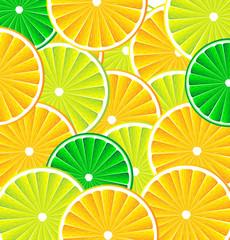 Citrus fruit background vector