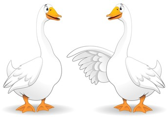 Photo on textile frame Draw Oche Fumetto Parlando-Goose Duck Talking-Vector