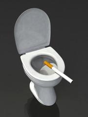 toilet smoking