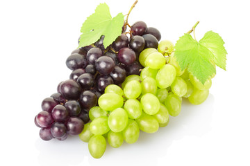 Grape cluster isolated on white, clipping path included