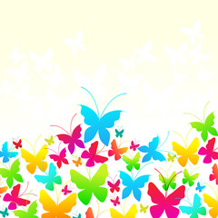 Beautiful summer butterflies