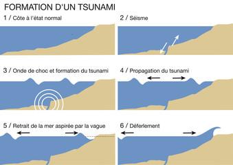 Schema_Formation_Stunami