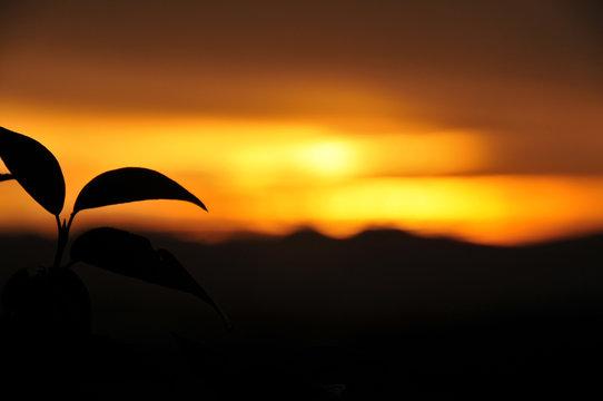 Coucher de soleil Auvergnat