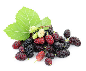 Fresh mulberries with leaves