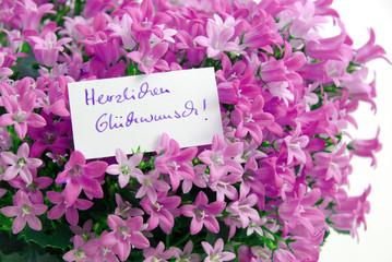 Herzlichen Glückwunsch! Im Blumenbett