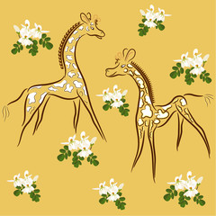 giraffes and moringa flowers