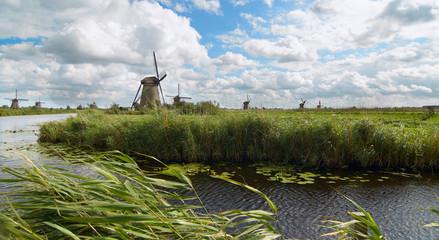 Holland mills