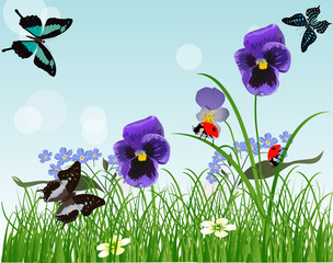 blue flowers and insects in green grass