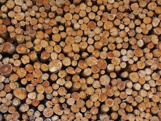 Aluminium Prints stères de bois