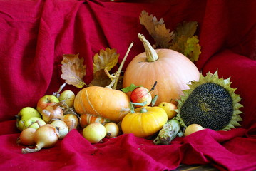jesienna martwa natura