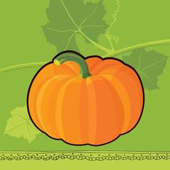 Pumpkin pattern doodle