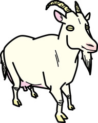 山羊 Capra
