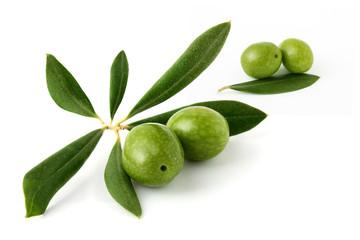 Fototapete - Olive verdi