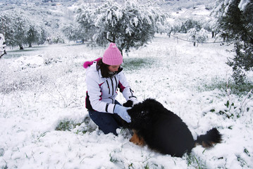 My dog and the snow
