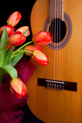 Tulips and guitar
