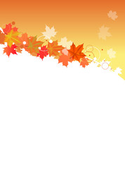 red autumn maple foliage design