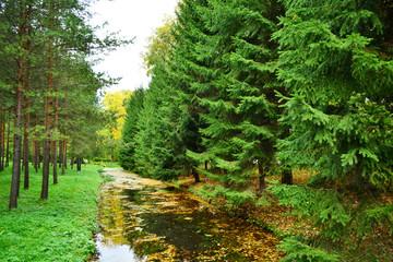 Canal in Tsarskoe Selo
