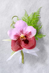 beautiful pink orchid corsage