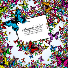 Background from color butterflies with label for your text