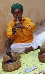 Snake charmer. India. Rajasthan.