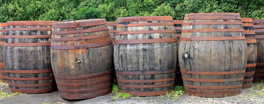 A Collection of Old Wooden Whisky Oak Barrels.