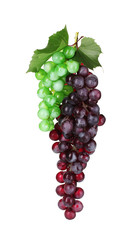ripe green and red grapes isolated on white
