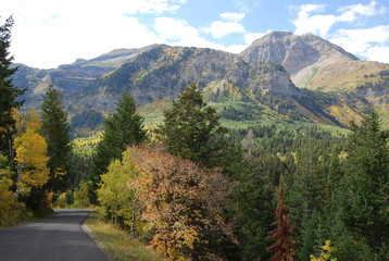 Autumn Mountains in the Uintah National Forest, Utah