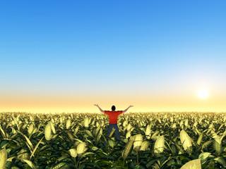 Mann in grünem Feld