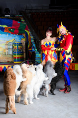 Clown couple and their dogs at the circus arena
