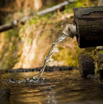 natural water trough