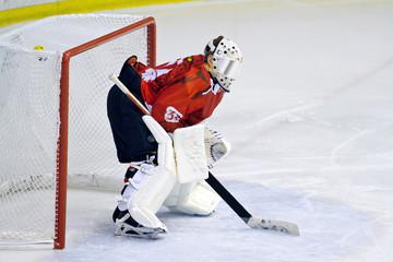 portiere hockey su ghiaccio