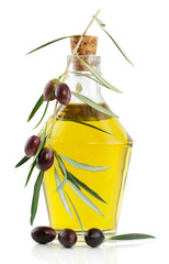 Olive oil and branch of an olive tree