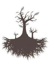 old tree root vector