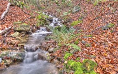 Río de montaña en otoño.