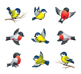 Tuinposter Vogels, bijen Winter Birds Illustration