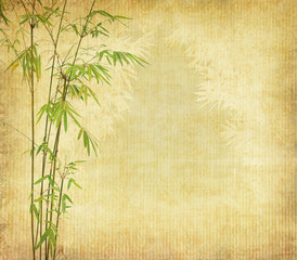 Fototapete - bamboo on old grunge antique paper texture