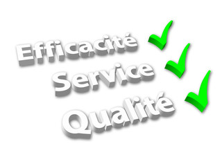 """EFFICACITE SERVICE QUALITE"" (garantie satisfaction coche 3d)"