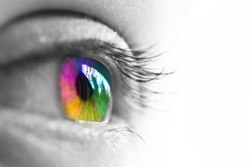 Fotobehang Iris œil de femme isolé sur fond blanc, vue de profil, iris multicolore arc-en-ciel, concept de vision et couleurs