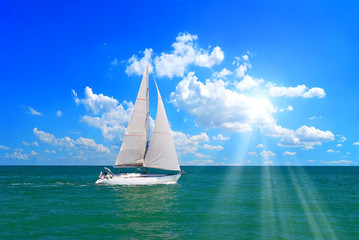 sailboat in the sea under the sun