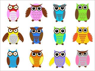 Set color owls.