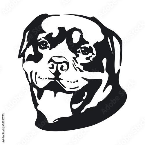 quot Dog Rottweiler quot photo libre