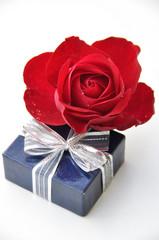 Rose en cadeau