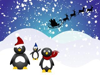 Pinguin Weihnacht