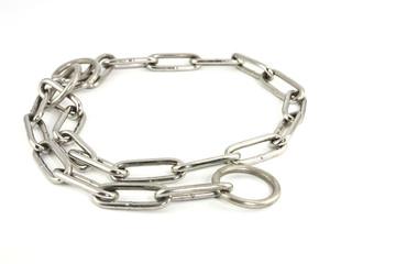 Steel dog collar