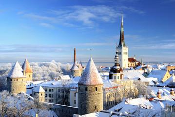 Tallinn city. Estonia. Snow on trees in winter